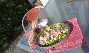 Salat i haven