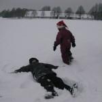 sneengle